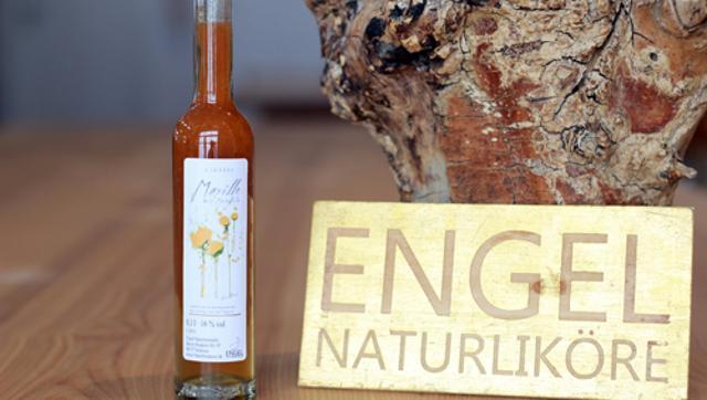 Likör Marille mit Mandeln Aprikosenlikör Mandellikör  von Manuel Engel Naturbrennerei in Schönau