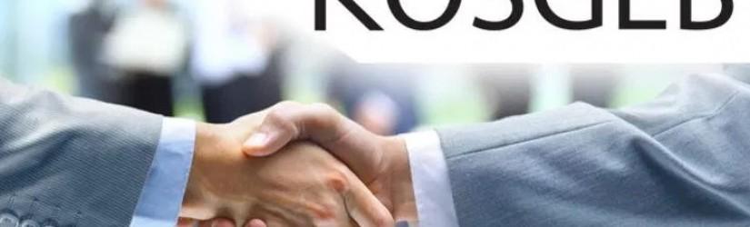KOSGEB E-Ticaret Desteği Nedir, Nasıl Alınır
