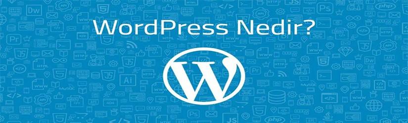 WordPress nedir?, Nasıl Kurulur? Rehberi - Öğrenmek için Hemen Tıkla