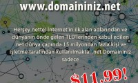 Domain Listesi