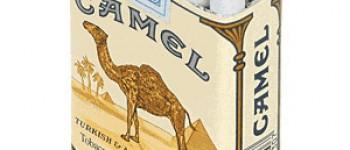camel sigarası