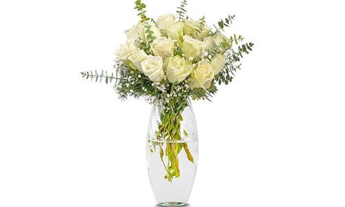 Beyazın Asaleti 15 Beyaz Gül - Artvin Çiçekçi