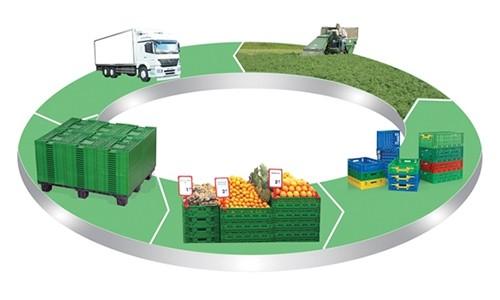 Gıda Taşımacılığı