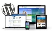 WordPress Gelişmiş Web Site Kurulumu