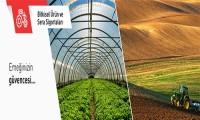 Bitkisel Ürün Sigortası