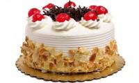 Pudingli Yaş Pasta