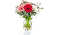 Renk Cümbüşü Mevsim Çiçekleri - Artvin Çiçekçi