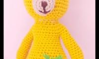 Ami010 sarı ayucug