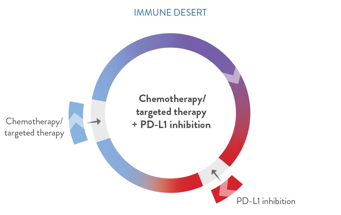 Combination strategies circle - immune desert