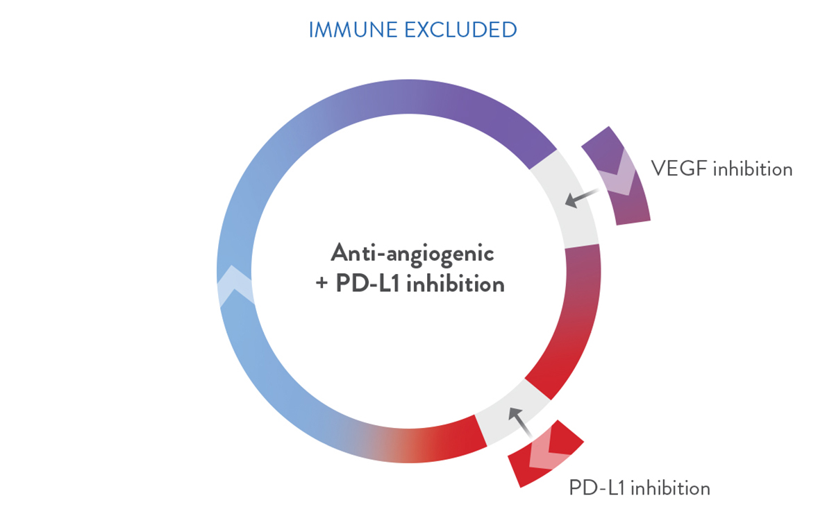 Combination strategies circle - immune excluded