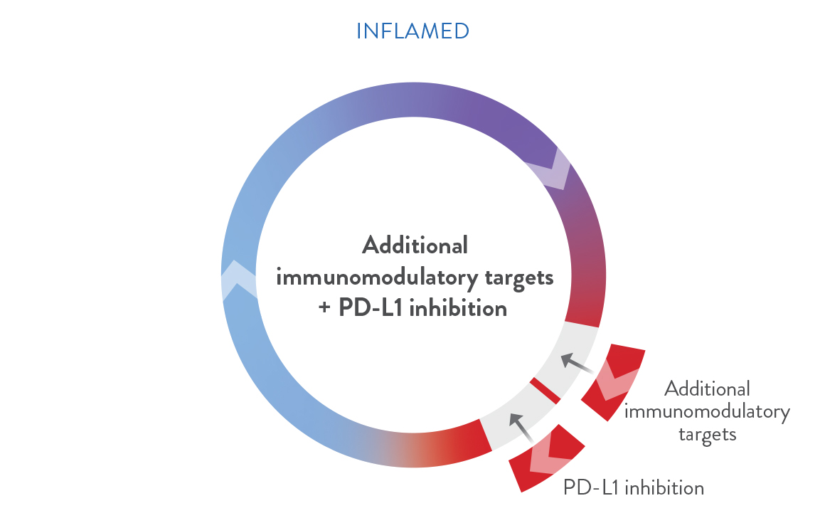 immune inflamed