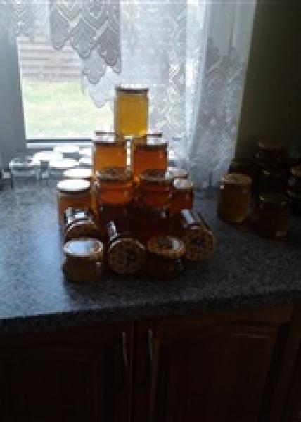 Grikiu medus-0