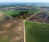 Ieškome išsinuomoti žemės ūkio paskirties žemės-0