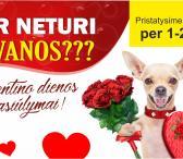 Originalios dovanų idėjos Valentino dienos proga!-0