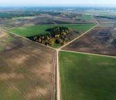 Išnuomojamas 21 ha žemės sklypas Telšių raj-0
