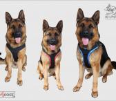 Petnešos šunims K9PROFI VERO CLASSIC-0