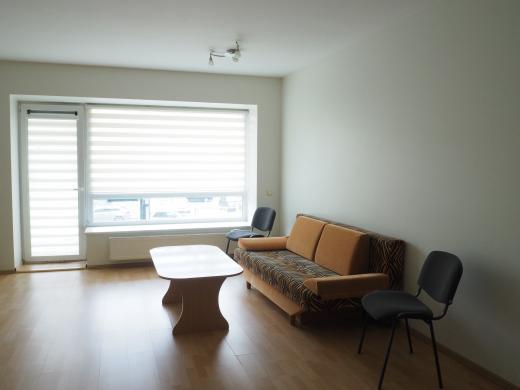 Išnuomojamas erdvus 1 kambario butas-3