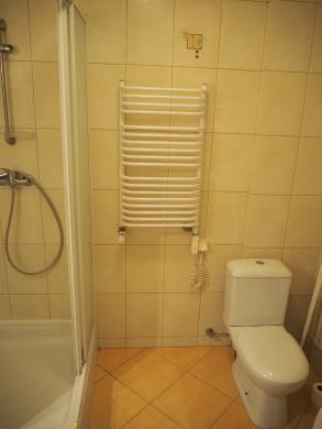 Išnuomojamas erdvus 1 kambario butas-4
