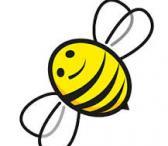 Perku bičių spiečius, pasiimu.-0