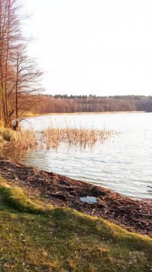 Puiki vieta sodybai, 70 km iki Vilniaus!-4