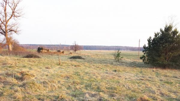 Puiki vieta sodybai, 70 km iki Vilniaus!-1