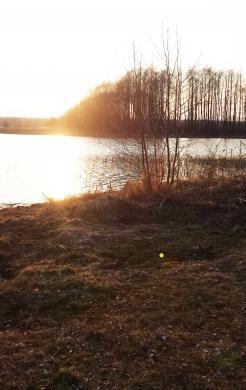 Puiki vieta sodybai, 70 km iki Vilniaus!-3