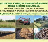 Krūmų ir savaime užaugusio miško kirtimas   Kita -0