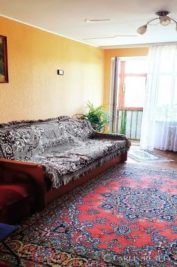 Vilnius, Antakalnis, P. Vileišio g., 1 kambario butas-2