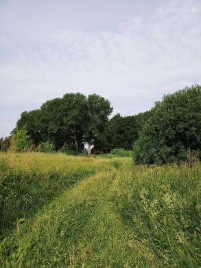 Parduodama sodyba su 3,15ha žeme prie Via Baltica-2