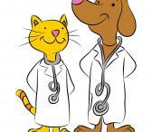 Veterinarijos paslaugos-0