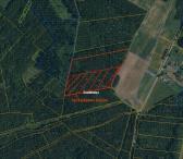 Parduodamas 3,5 ha miško plotas-0