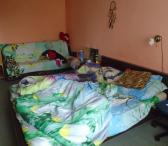 Išnuomojamas kambarys su baldais Kauno c.- 120Eu/mėn-0