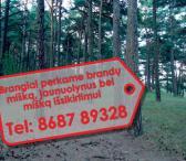 Perkame miškus visoje Lietuvoje-0