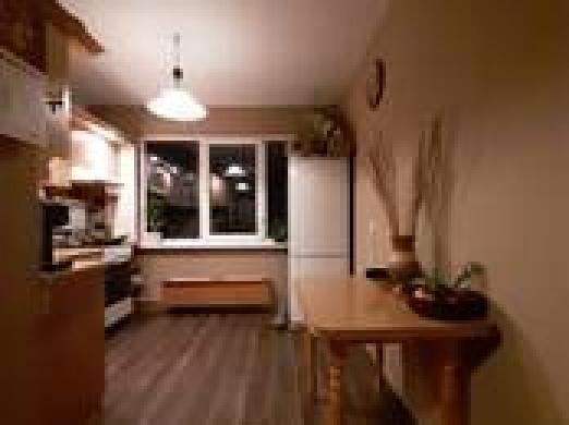 Alksnynes g.,2 kambarių butas,su reguliojamu šildymu-1