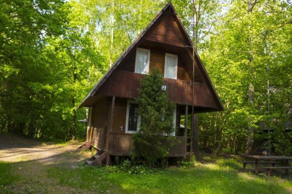 Poilsiavietė, poilsio namai pušyne prie ežero Žalvės-7