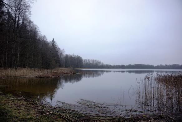 Parduodamas 12,57 ha sklypas su 260m Kermėžio ežero pakrantės Utenos r. Pakermėžio k.-2