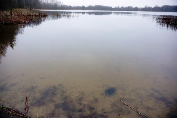 Parduodamas 12,57 ha sklypas su 260m Kermėžio ežero pakrantės Utenos r. Pakermėžio k.-3
