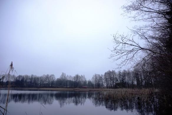 Parduodamas 12,57 ha sklypas su 260m Kermėžio ežero pakrantės Utenos r. Pakermėžio k.-7