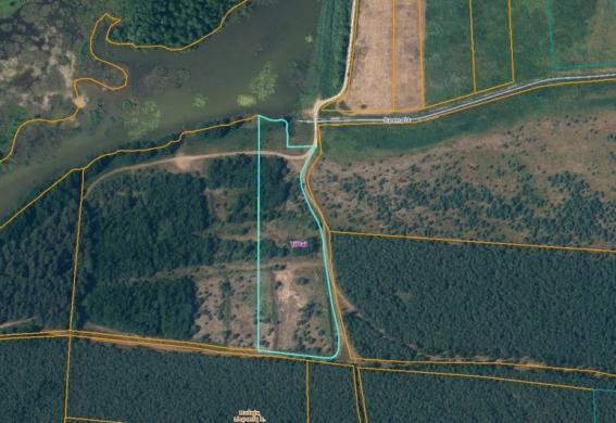 Trakų r. 1,29ha prie Greiželio ežero miške su pakrante-7