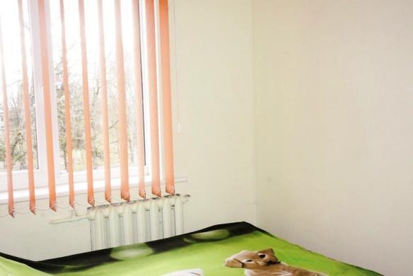 3 k. butas Šventupės k. Ukmergės m.-1