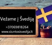 Siuntos į Švediją +37069818264-0