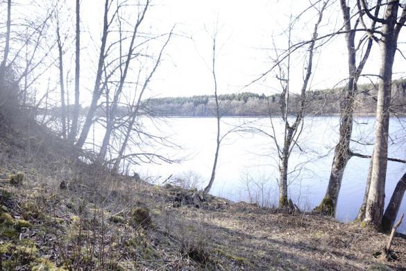 Sodyba ant Tauragno ežero kranto Utenos r.-6