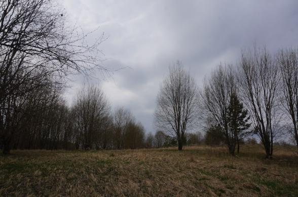 7,2225 ha žemės sklypas Alejūnų k. Ignalinos r.-4