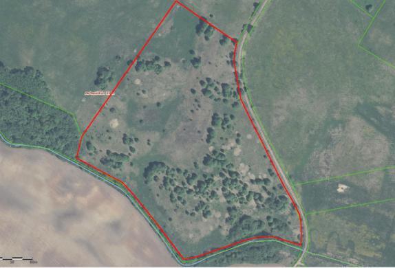 7,2225 ha žemės sklypas Alejūnų k. Ignalinos r.-6