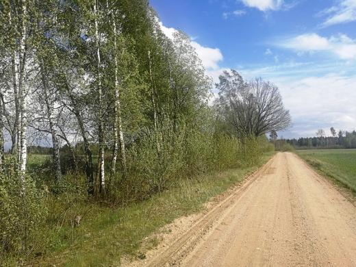 60 arų rekreacinis sklypas prie ežero Girsteitiškių k. Molėtų r.-6
