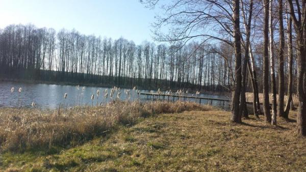 Puiki vieta sodybai netoli ežero-3