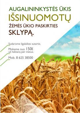 Ūkis išsinuomuotų žėmės ūkio paskirties sklypą Kėdainių/Kauno raj.-0