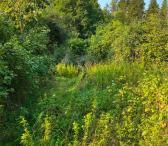Prie Druskininkų miške sodyba-0
