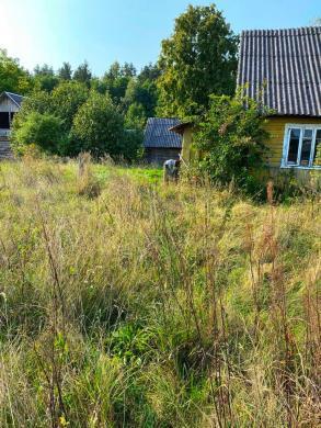 Prie Druskininkų miške sodyba-2