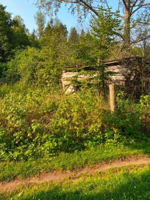 Prie Druskininkų miške sodyba-5